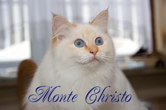Hinter dem Regenbogen Monte Christo von der weißen Fee
