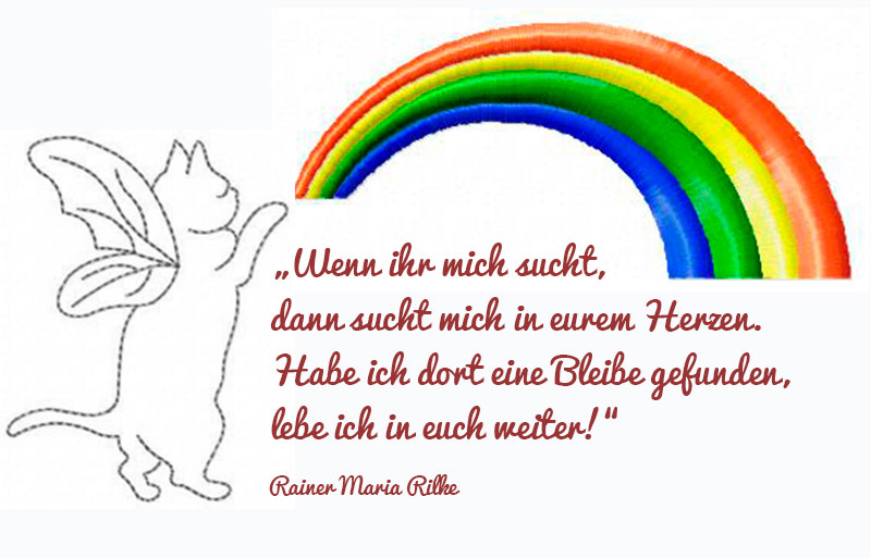 Hinter dem Regenbogen